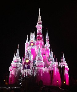 Disney's Magic Kingdom was lit for the holidays on the last night of my visit.